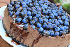 cheesecake-1559404_960_720